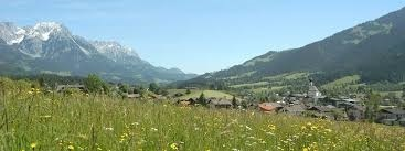 Sommer in der Region Wilder Kaiser