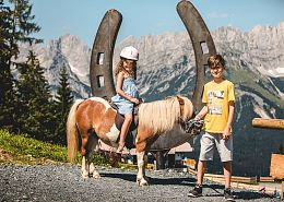 25 ponies, petting zoo and the Astbergsee lake