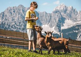 children can ride ponies and discover the surrounding of the Astberg mountain
